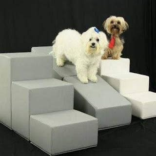 escadas e rampas para cães