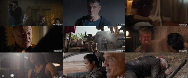 Trafico Humano (2015) DVDRip Latino