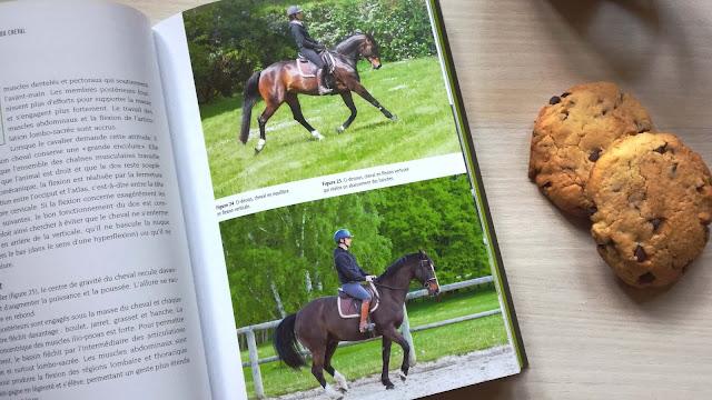 Photo du livre avec des illustrations de chevaux au travail dans différentes allures