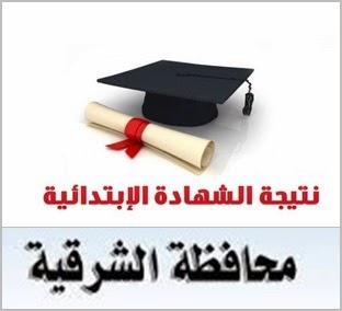 الان نتيجة الصف السادس الابتدائى بالشرقيه 2014 توجيه الشرقيه