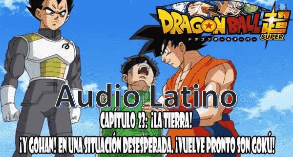 Ver capitulo 23 en audio latino online, Piccolo ha muerto y Gohan se encuentra gravemente herido.