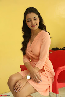 Rukshar Mir in a Peachy Deep Neck Short Dress 014.JPG