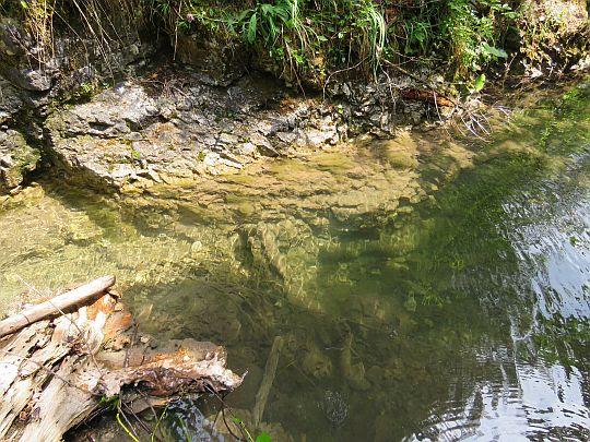 Woda potoku.