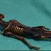 Penumuan Kerangaka yang di duga Alien hebohkan Chili