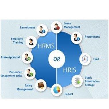 Kenali Apa Itu Aplikasi HRIS - Aplikasi HR Zaman Now
