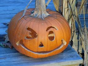 Easy Pumpkin Decomposition Science Experiment