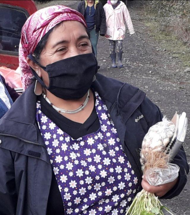 Concejala Prosperina Queupuan Cheuquian
