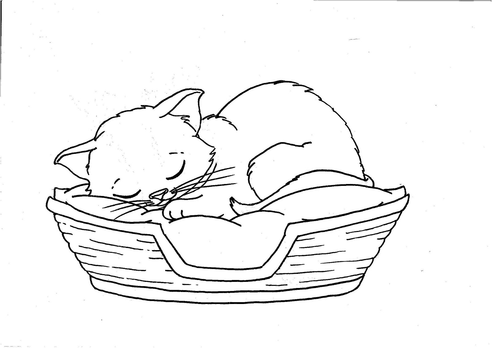 Coloring pages cats and kittens ~ RadArt: Cats Rule Coloring Sheets