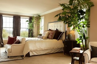 Bedroom Plants for healthy Relationship & Sex life