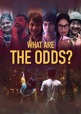 What Are The Odds 2020 Hindi 480p WEB HDRip 250Mb x264