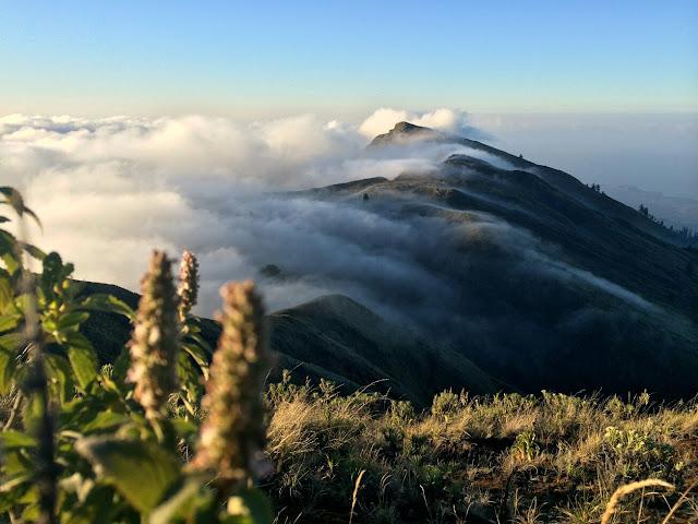 Pemandangan indah puncak gunung Tambora