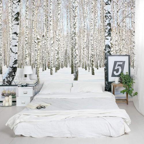 metsä tapetti valokuvatapetti metsä taustakuva talvi koivu koivu puunrunkoja koivu runkoja lumi maisema yksivärinen Fund tapetti makuuhuoneessa