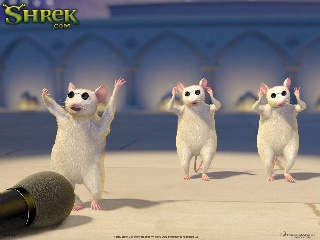 Blind Rats Shrek