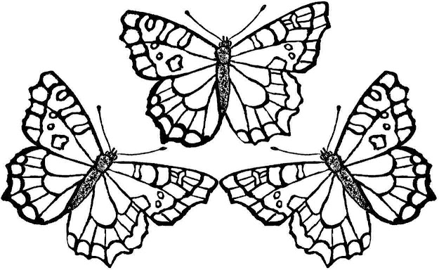 Butterfly Coloring Page With Butterfly Coloring Page Free Printable Pages
