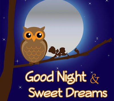 Pictures good night phrases