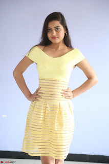 Shipra gaur in V Neck short Yellow Dress ~  056.JPG