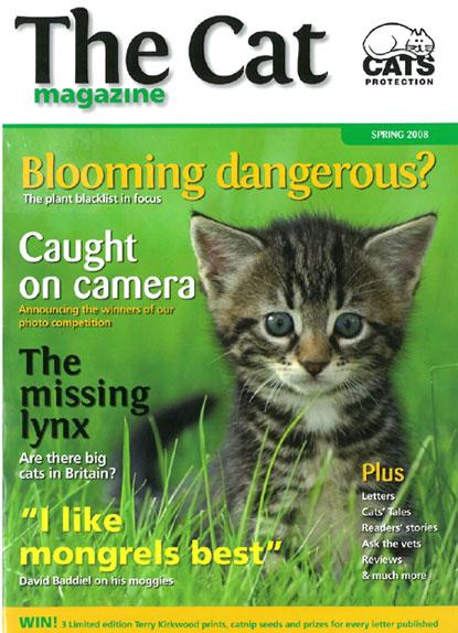 The Cat magazine Spring 2008