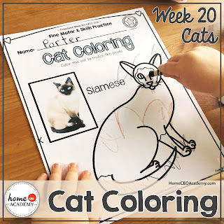 https://www.teacherspayteachers.com/Product/Cats-Preschool-Unit-Printables-for-Preschool-PreK-Homeschool-Preschool-3576494