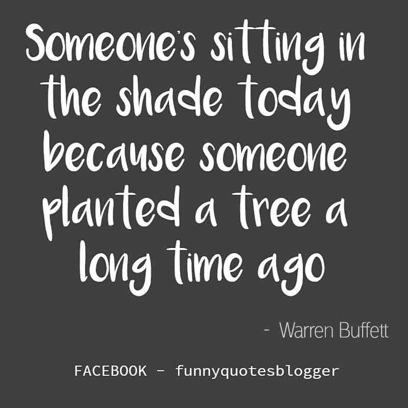 "Lifelong Learning Quote: ""Someone is sitting in the shade today because someone planted a tree a long time ago."" - Warren Buffett quote"
