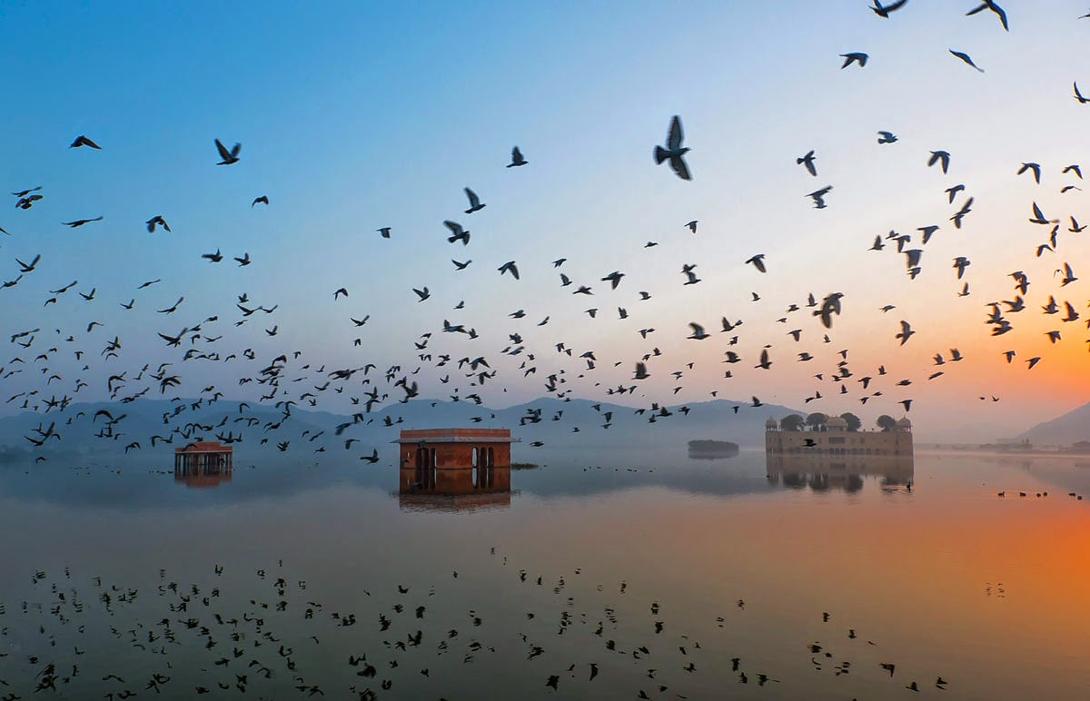 4. Jal Mahal during Sunrise - 10 Highlights from the 2015 Nat Geo Traveler Photo Contest