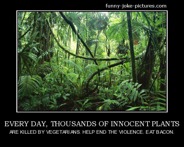 Vegetarians Kill Innocent Jungle - Eat Bacon Picture