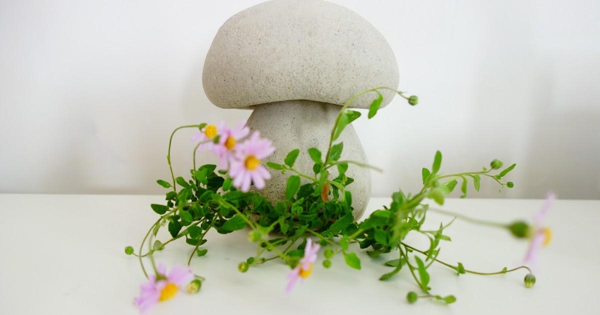 Champignon De Jardin Pour Decoration