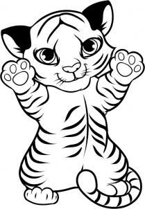 Baby Tiger Coloring Pages Images Download