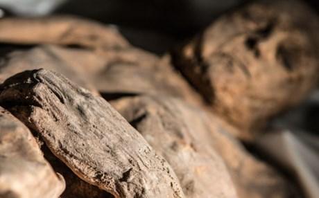 Αναθεωρείται η ιστοριά της ευλογιάς λόγω μιας παιδικής μούμιας