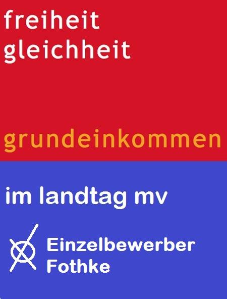 Grundeinkommen im Landtag