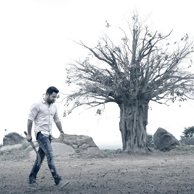 Jr NTR picks from Aravindha Sametha Film
