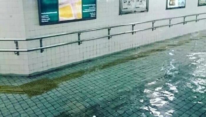 Air Banjir DI Jepang Bening Seperti Kolam Renang