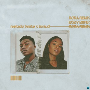 Download Audio   Reekado Banks - Rora (Remix) ft. Lavaud