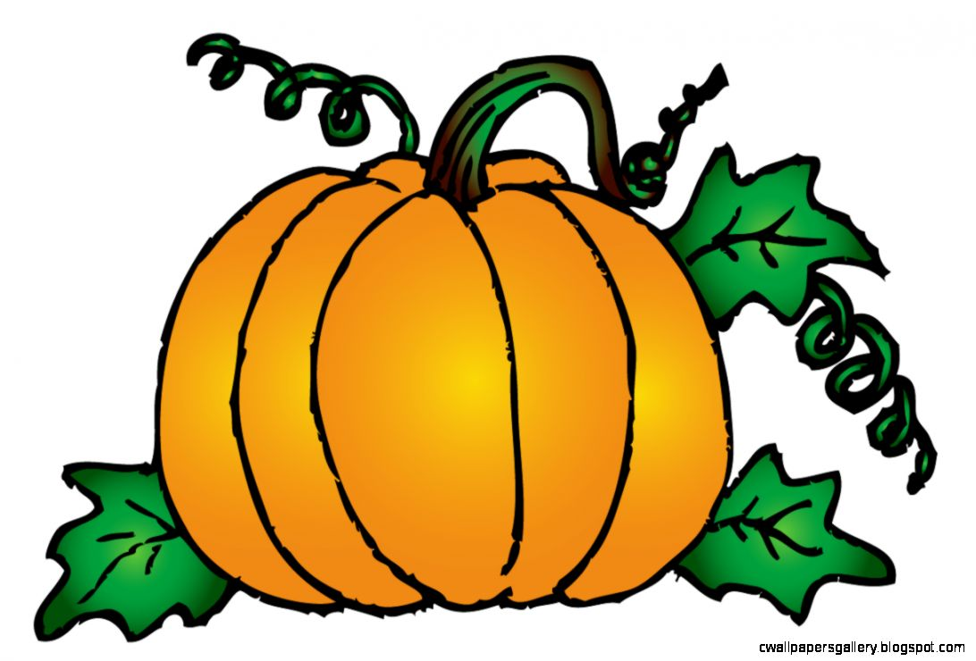 Pumpkin Patch Clipart | Wallpapers Gallery