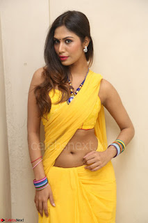 Nishigandha in Yellow backless Strapless Choli and Half Saree Spicy Pics 103.JPG