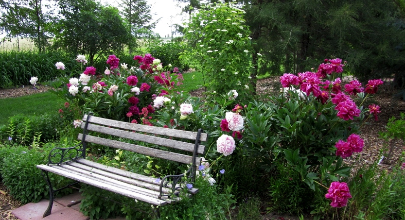 Garden Benches on Pinterest | Benches, Outdoor Benches and ...