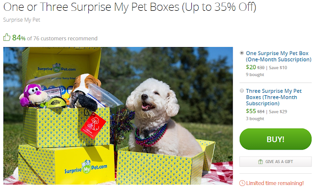 groupon deal surprise my pet