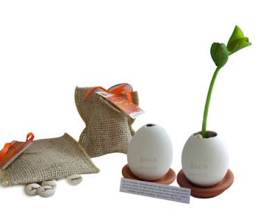 planta mágica lembrancinha
