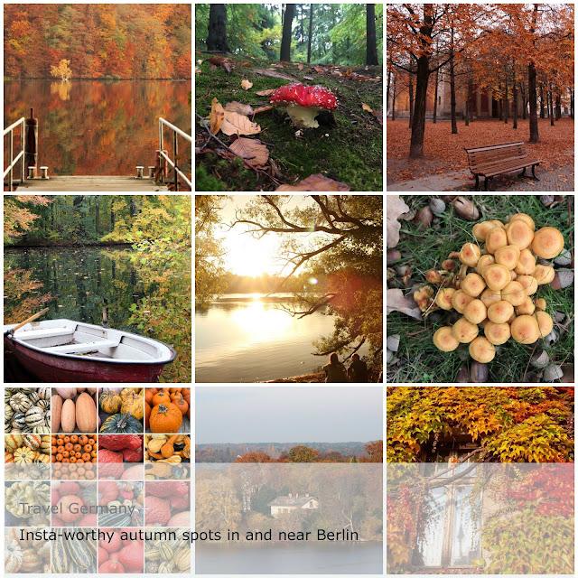 Berlin, foliage, Wannsee pfaueninsel, tiergarten, herbst, autumn