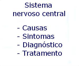 Sistema nervoso central para que serve o que é função