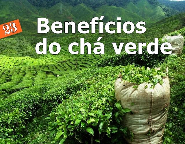 23 benefícios do chá verde para sua saúde, perda de peso e pele