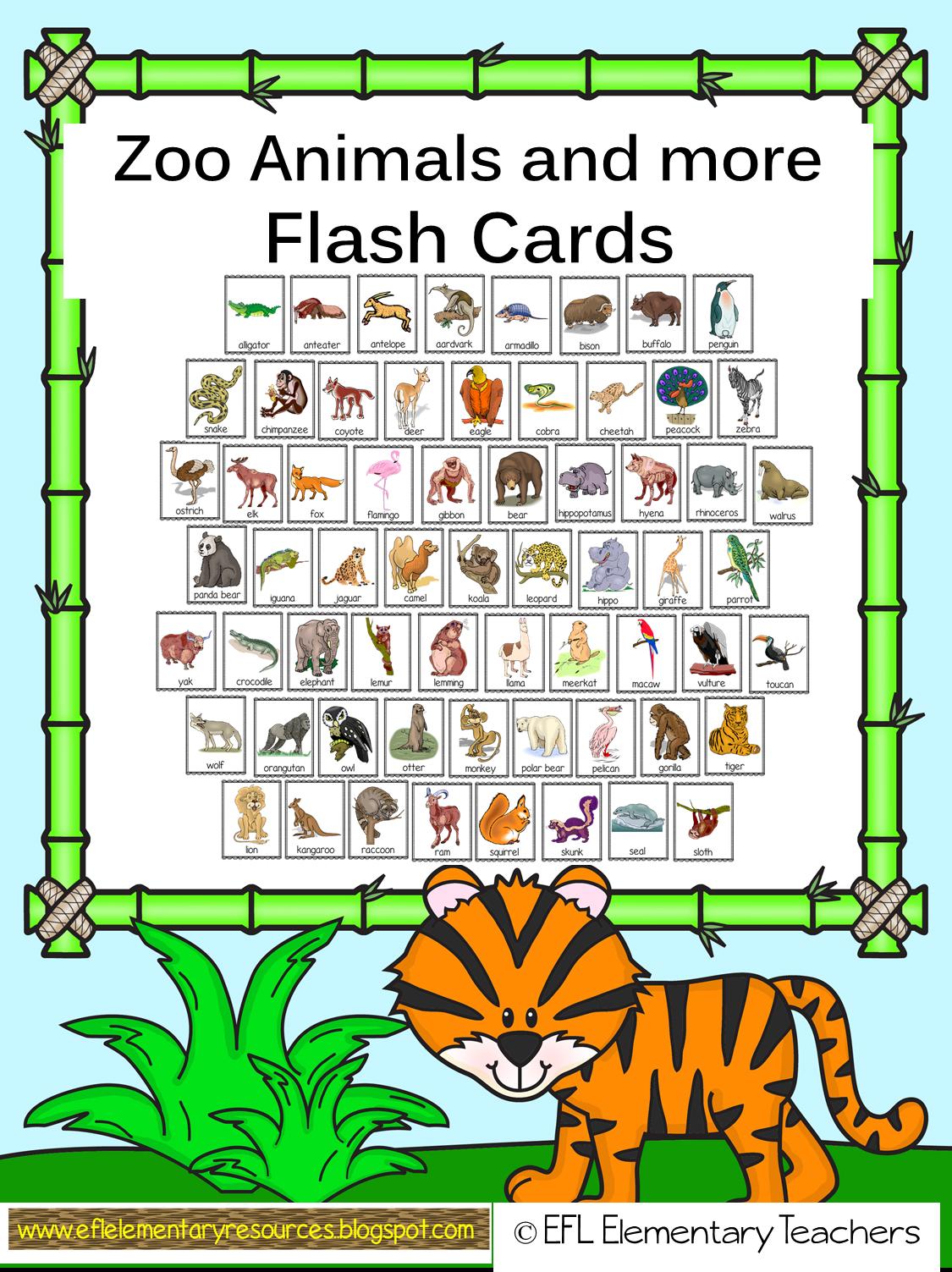Efl Elementary Teachers Zoo Theme Resources For