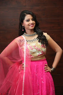 Geethanjali sizzles in Pink at Mixture Potlam Movie Audio Launch 033.JPG