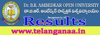 B. R. Ambedkar Open University B.Ed (SE) 1st and 2nd Yr Results