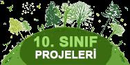 Coğrafya 10 proje