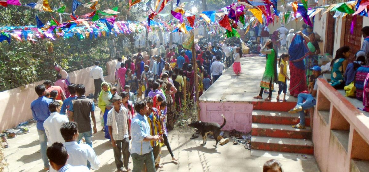 maha-shivratri-festiwal-jhabua-महाशिवरात्रि के पावन पर्व पर थांदला गेट मित्र मंडल ने देवझिरी तीर्थ पर किया महाप्रसादी का भव्य आयोजन