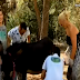 Η Χριστίνα Λαμπίρη έγινε ρεπόρτερ και άρμεξε... γαϊδούρα! (video)