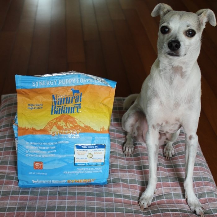 Natural Balance Synergy Dog Food Second Bag - Quick Review