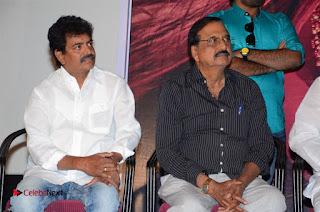 Avanthika Telugu Movie Trailer Launch  0023.jpg