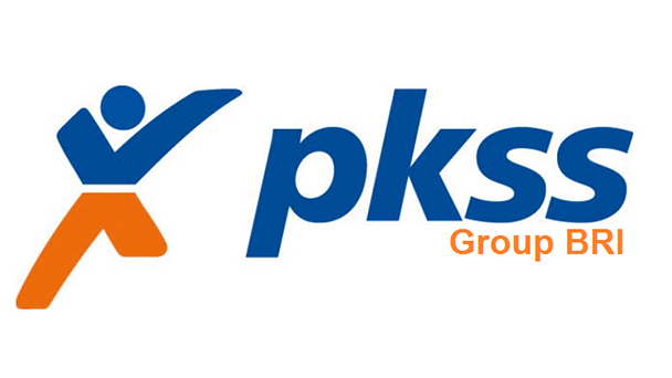 Lowongan Kerja PT. Prima Karya Sarana Sejahtera (PKSS) Makassar