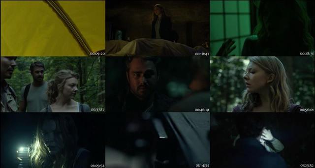 El Bosque Siniestro (2016) DVDRip Latino